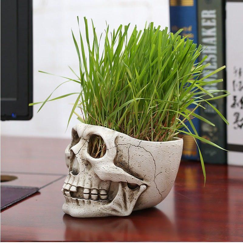 Skull Flower Pot