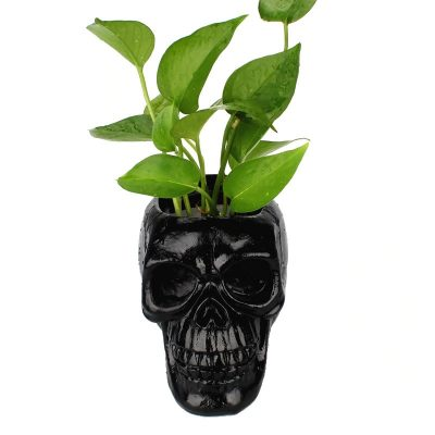 Black Skull Flower Pot
